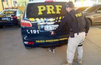 PRF prende motorista com mandado de prisão por embriaguez na BR 116, em Rio Negro/PR