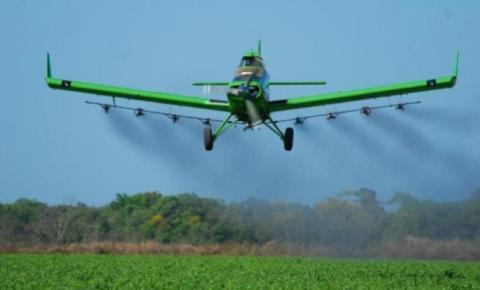 Aviação agrícola do Brasil se mobiliza para combater gafanhotos