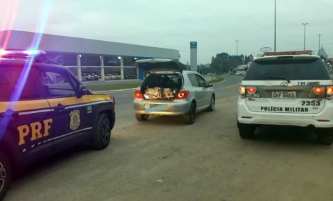 Na BR 280 em Canoinhas, motorista de carro clonado é preso pela terceira vez no ano por contrabando de cigarros